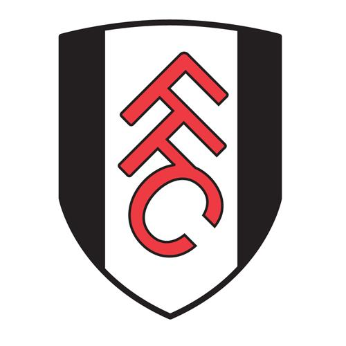 Croydon Guardian: Fulham FC prize goes to community champion