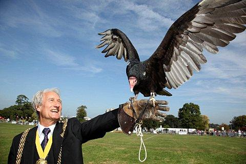 Croydon Guardian: Mayor of Lambeth, Councillor Clive Bennett, with Otis a turkey vulture