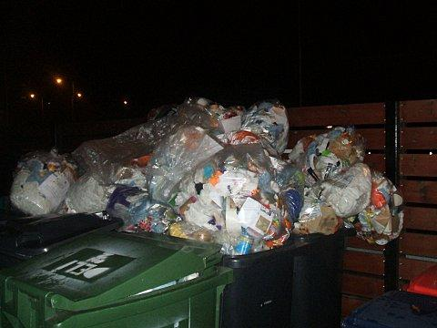 Council landfill bins contained recyclable waste