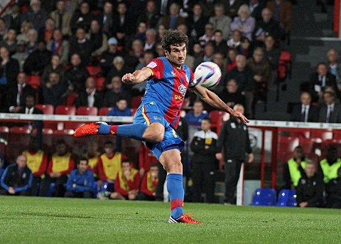Back from suspension: Mile Jedinak's return is a major plus as Holloway believes he was missed in the 2-2 draw at Birmingham    SP70344