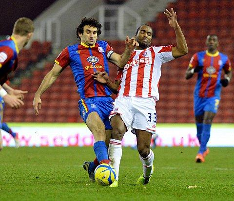 Wanted man: Mile Jedinak has attracted interest from Premier L