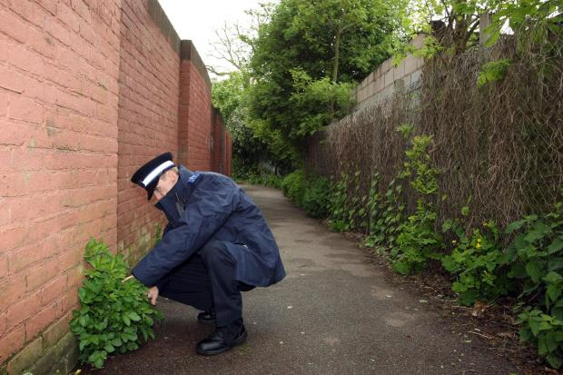 Croydon Guardian: Police search the alley where Willett is alleged to have assaulted a girl