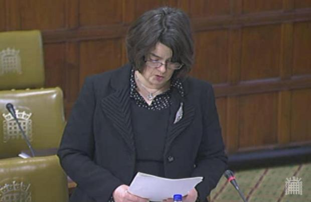 Health minister Jane Ellison speaks in Westminster Hall on Tuesday