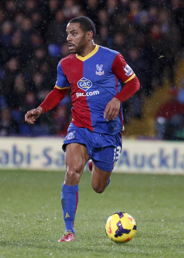 Croydon Guardian: Palace 1-0 Hull 28/01/2014