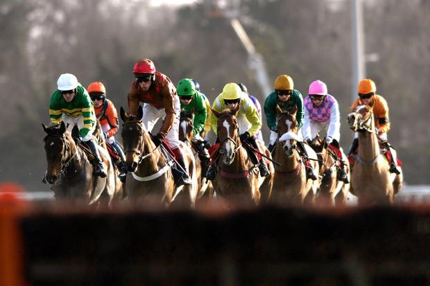 Tips for Cheltenham