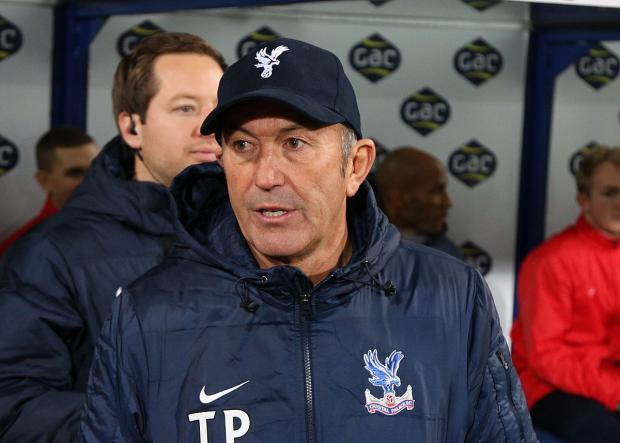 Wise beyond his years: Crystal Palace boss Tony Pulis