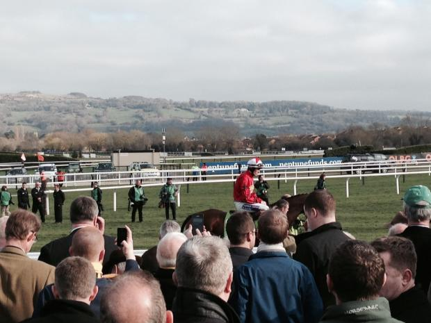 Croydon Guardian: The New One parades prior to the Champion Hurdle