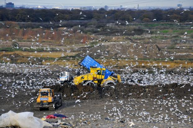 Waste of money: Recycling is cheaper for local authorities than landfill
