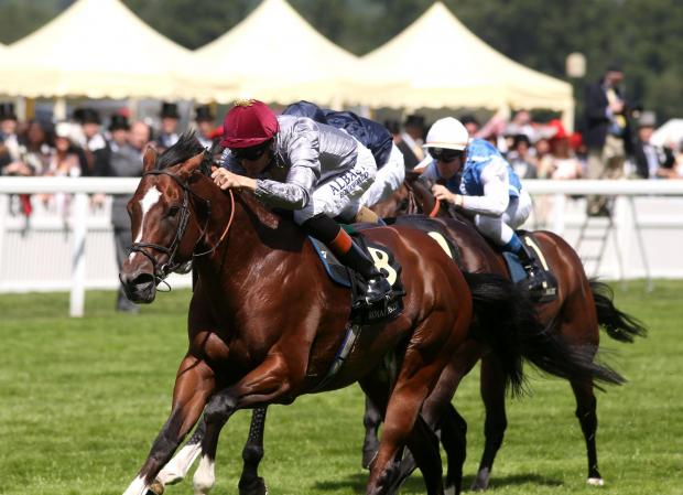 Toronado and Richard Hughes on their way to victory at Royal Ascot on Tuesday