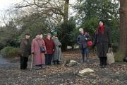 Park users have criticised the councll for chopping down trees