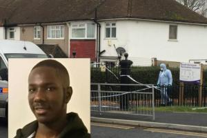 David Darko, inset, was knifed to death at South Norwood Recreation Ground in January