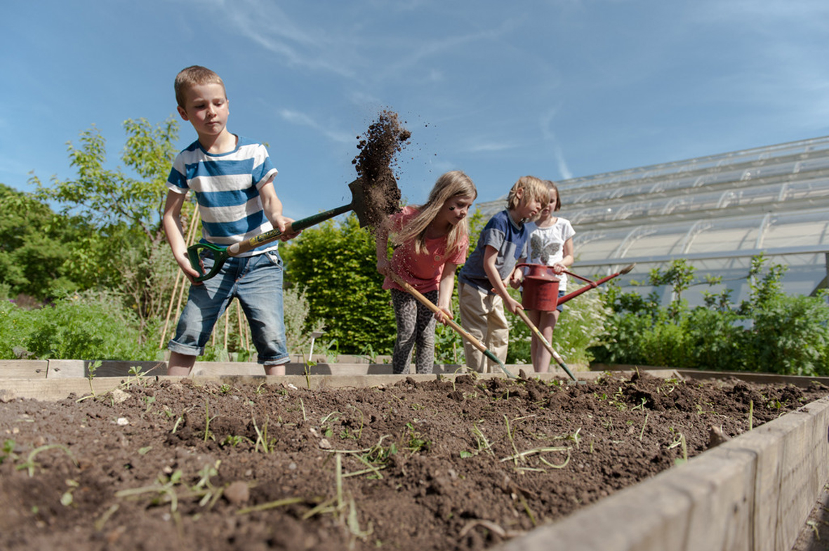 Family Gardening Festival 'Get set grow' and May Half Term