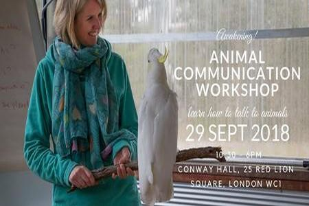 London Animal Communication Workshop