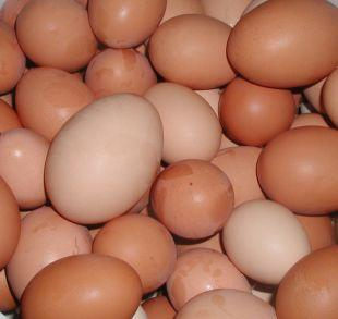 Croydon Guardian: Shopkeepers ban youngsters from buying eggs