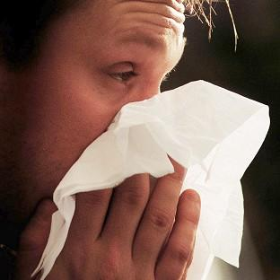 Croydon Guardian: More than half of us could be suffering from hay fever by 2060, a researcher has said